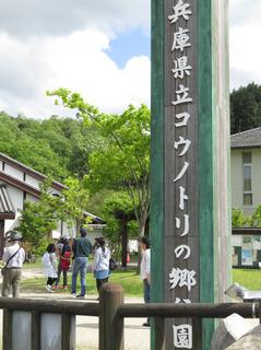 コウノトリの郷.jpg